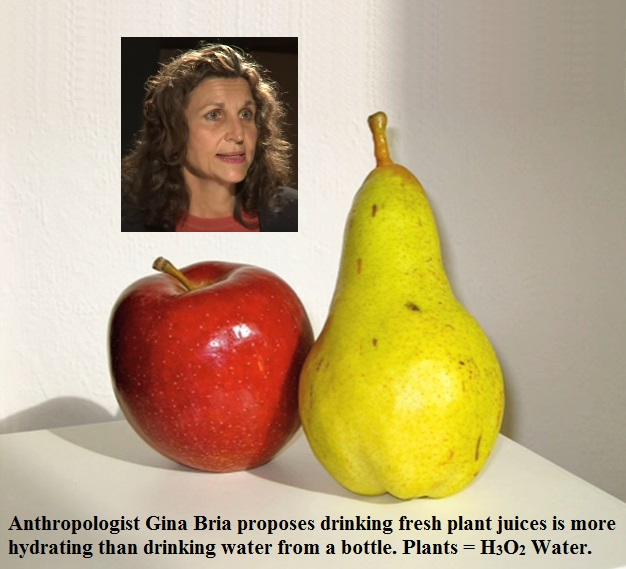 Anthropologist Gina Bria proposes drinking fresh plant juices is more hydrating than drinking water from a bottle. Plants = H3O2 Water.