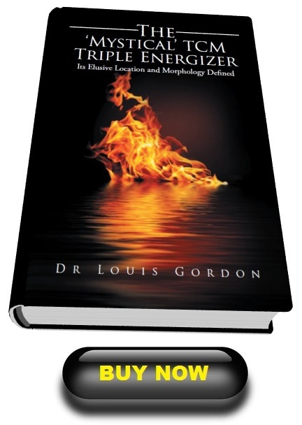 xlibris-buy-book-mystical-triple-energizer-mysterious-sanjiao-mysterious-triple-warmer-mysterious-triple-heater-button